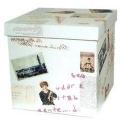LUCIA TORRES «JUEGOS Y JUGUETES V» Caja B - 30x26,7cm - Museo de Arte «Eduardo Minnicelli» Año 2006