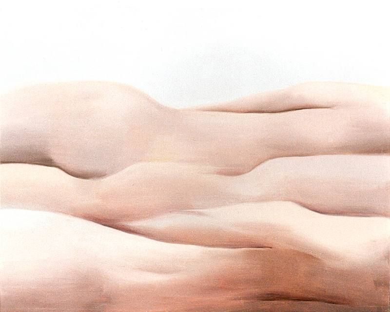 LUCIA TORRES «MESETA..., PATAGONIA..., ESA PIEL...» con «Interiores...» 10 - Óleo sobre tela 80x100cm - Año 2000