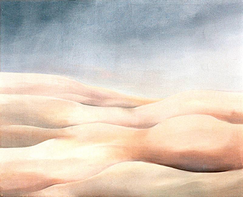 LUCIA TORRES «MESETA..., PATAGONIA..., ESA PIEL...» con «Interiores...» 8 - Óleo sobre tela 80x100cm - Año 2000