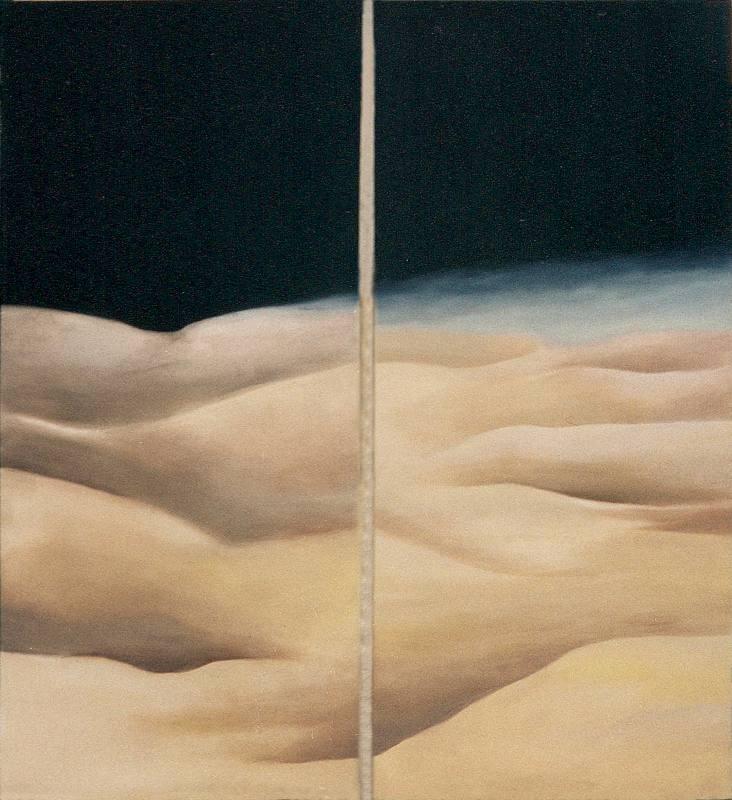 LUCIA TORRES «MESETA..., PATAGONIA..., ESA PIEL...» (fragmento ambientación) con Óleo sobre tela - 200x180cm - Año 2001