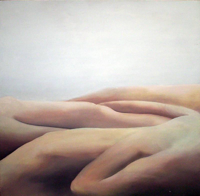LUCIA TORRES «MESETA..., PATAGONIA..., ESA PIEL...» Óleo sobre tela 100x100cm - Año 2001