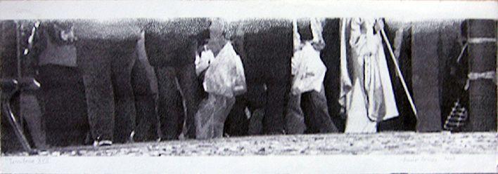 LUCIA TORRES «TERRITORIO» XVII - Transfer 19x56cm - Año 2007