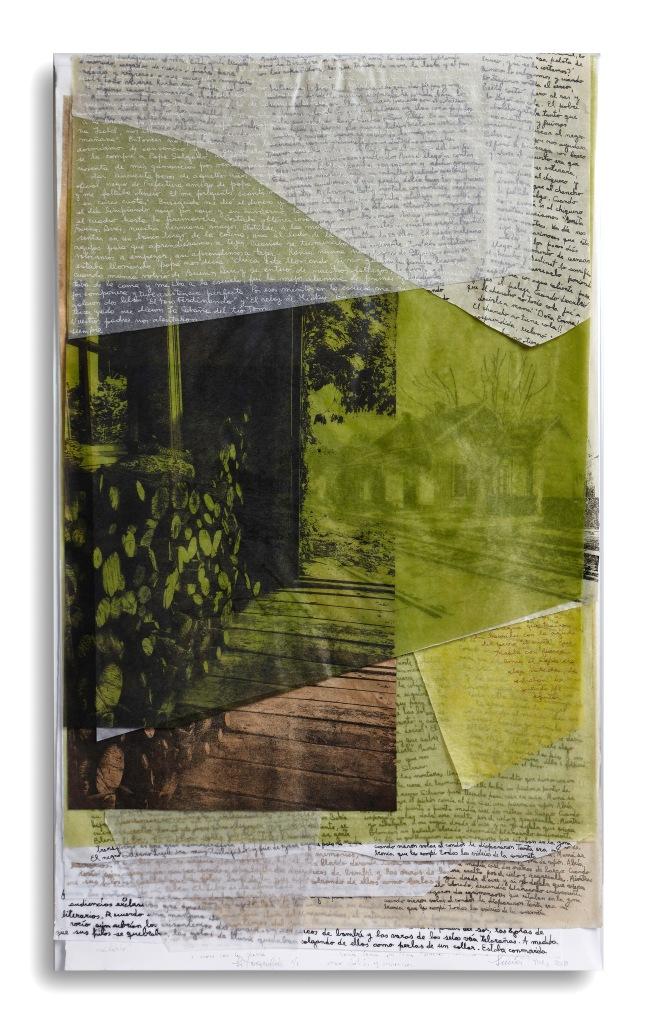 LUCIA TORRES «VIDA 2» Litografía - 100x60x4cm- Año 2018 en «LITOGRAFÍA ARGENTINA CDE 2019» Centro de Edición, Central Newbery Galería de Arte - Año 2019