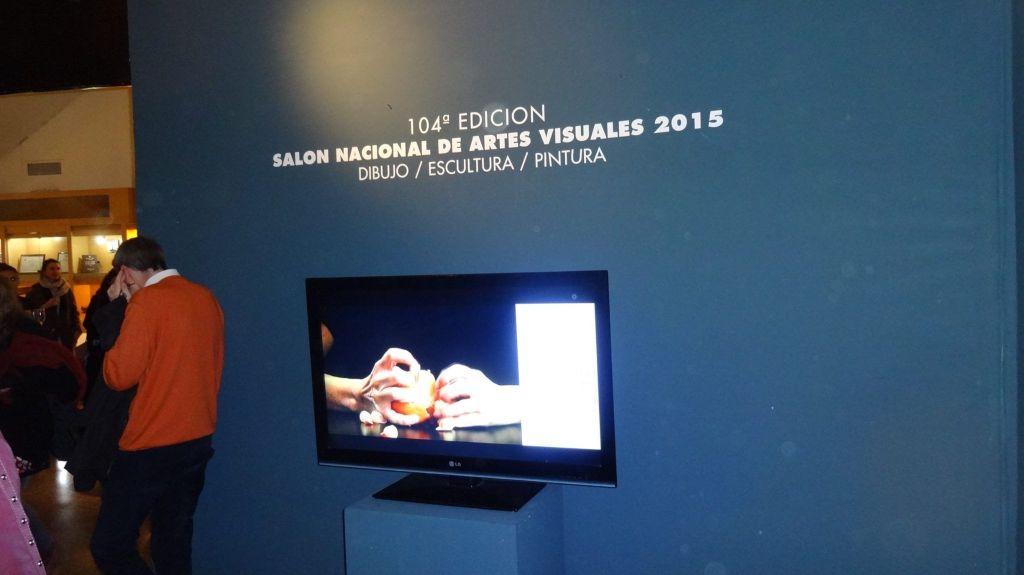 «104 Edición SALON NACIONAL DE ARTES VISUALES 2015» en el Palais de Glace, Palacio Nacional de las Artes