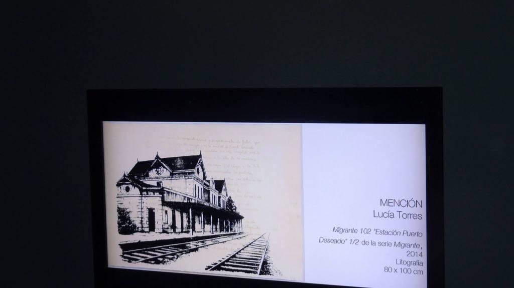 LUCIA TORRES «MENCIÓN» en la «104 Edición SALON NACIONAL DE ARTES VISUALES 2015» en el Palais de Glace, Palacio Nacional de las Artes