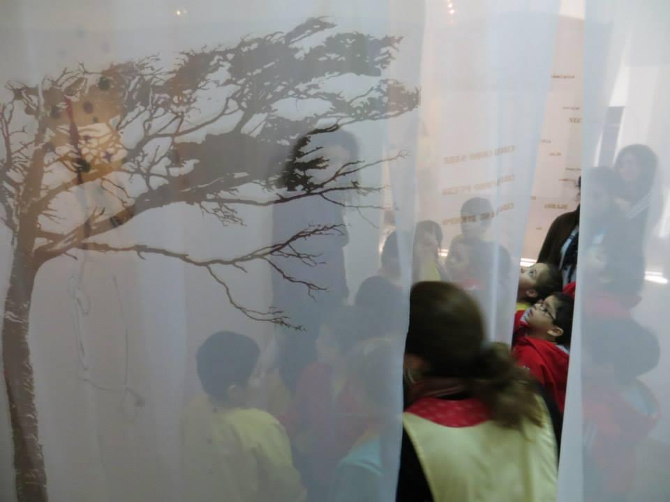LUCIA TORRES - Instalación MIGRANTE en «NATURALEZA Y URBANISMO» con «GRUPO 5» en el Museo de Arte Eduardo Minnicelli, Río Gallegos
